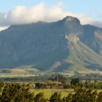 40HA FARM FOR SALE IN PAARL
