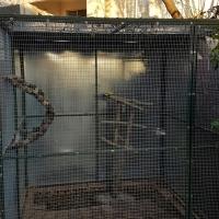 Bird Avairy 1.800 x 1.800 x 1.800 - Weltevredenpark Roodepoort