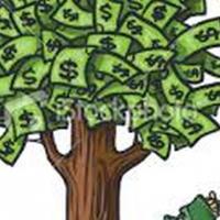 Kleinhoewe te koop met potensiele inkomste uit granaatbome
