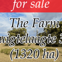 Make an Offer: The Farm Ruigtelaagte 353 - Lichtenburg Area (1320ha)