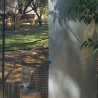 Outdoor birdcage with birds