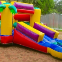Slide @ Side with Palm trees with pond - Jumping castles for Sale