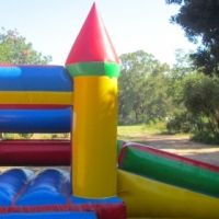 Slide @ Side with Pond Jumping Castle for Sale