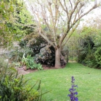 SUNNY SECURE HOME IN FOREST GLADE, TOKAI