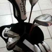 I have the following golf clubs