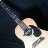 Firstline Adam Levin designer series al363 acoustic guitar .