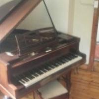 Franz Liehr Baby Grand Piano