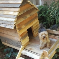 Small Dog Kennel Made buy Natures Gift