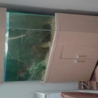 250 liter corner fish tank complete with stand.
