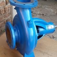 125-315 Centrifugal Pump