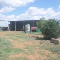 Kroonstad 380ha plaas te koop