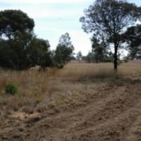 Cullinan Plot 1 hectare