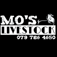 Mos Livestock Qurbani 2016!