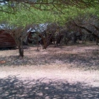 21.5 Hektaar Land in Naboomspruit (Mookgophong) URGENT SALE!!