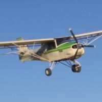 Bushbaby airplane
