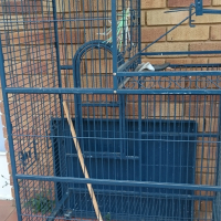 Large parrot cage on wheels and play area on top