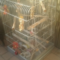 parrot cage with stand and toys
