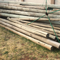 Treated Poles for sale