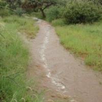 2163ha Water ryke plaas