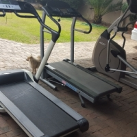 treadmills and ellipticals for sale