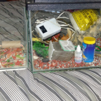 2×fish tanks with accessories