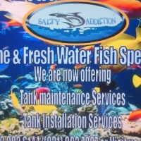 Maintenance and Supplier of Marine and Fresh Water Fish and Tanks - Salty Addiction