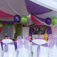 event planner: kids and adult functions