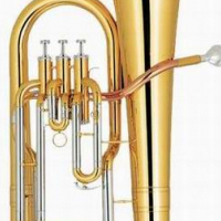 Euphonium with case