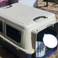 Plastic pet transport boxes