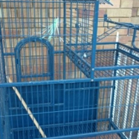 Large house type parrot cage