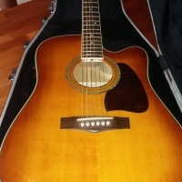 Ibanez Acoustic/Electric guitar and hard case