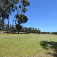 37Ha Farm For Sale in Somerset West