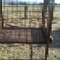 huge chinchilla / bird Cage