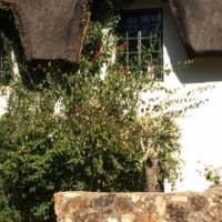 Cute, cosy double storey thatch cottage to rent in lovely Irene area