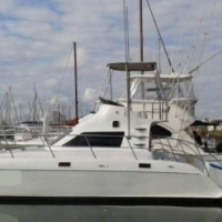 34 Rayvin Power Cat Charter Boat