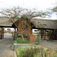 BUSHVELD STAND FOR SALE! 1 Ha