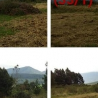 Stunning 70 Hectare Vacant land available at affordable price