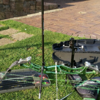 HOYT competition bow for sale