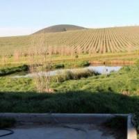 Beautiful Farm For Sale 4km Outside Durbanville