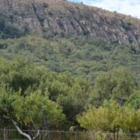 Private Owned Property for Sale Prefect for, Development, Game Farm, Lodge  - 29 Hectares
