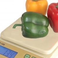 PORTION SCALE =ELECTRONIC=5kg x 1g