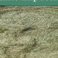 eragrostis and teff for sale