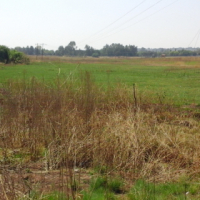 18 ha Vacant Land For sale in Bapsftonein next to the R50 Delmas Road