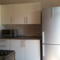GARDEN FLAT TO RENT (STUDENT / SINGLE PROFESSIONAL)