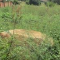 VACANT LAND AND PLOT FOR SALE