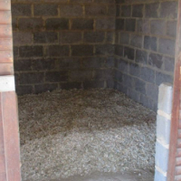 Renting 5 Stables With Individual Paddocks