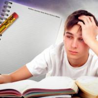 Hulp met skooltake/opstelle/praatjies/vertaalwerk/navorsing vir skoolkinders en studente