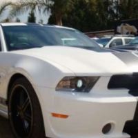 Ford Mustang Shelby GTS 26
