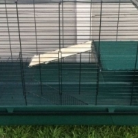 Rabbit/Guinea Pig/Small Animal Cage with loads of Accessories