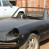 ALFA SPIDER FOR SALE